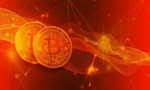 Bitcoin Rush diskutiert über Sicherheit